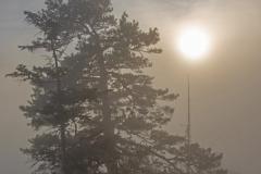 Nebelgrenze__1