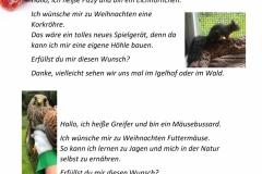 Wunschzettel-4