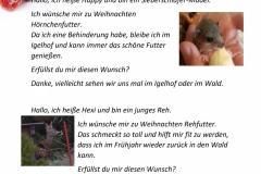 Wunschzettel-5