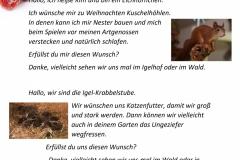 Wunschzettel-6