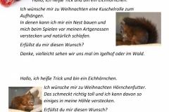 Wunschzettel-8