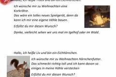 Wunschzettel-9